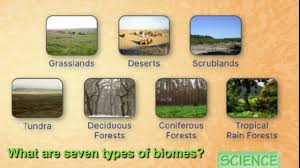 What Are Biomes Seven Types Of Biomes Song