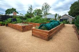 build raised garden bed there are a number of long raised garden beds in a wonderful