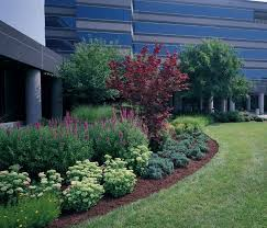Small Picture 30 best Commercial Landscaping Flowers images on Pinterest