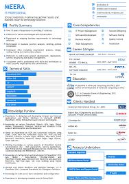 visual resume for senior level