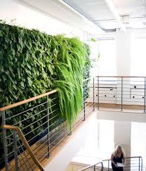 Vertical Kitchen Herb Garden Inspiring Indoor Garden Ideas Offering Vertical Garden Wall