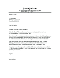 It Jobs Cover Letter It Job Cover Letter Example Of Data Analyst