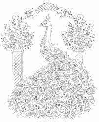 Peacock Coloring Sheet Inspirational Photos Fresh 46 Luxury S