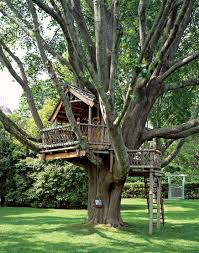 8 Best Treehouse Images On Pinterest  Architecture Treehouse Diy Treehouses For Kids