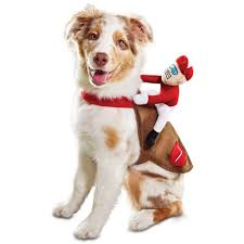 Pin By Ericka Bergquist On I Want A Dog Dogs Jockey