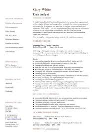 Data Analyst Cv Sample Experience Of Data Analysis And Data Migration Cv  Wr.