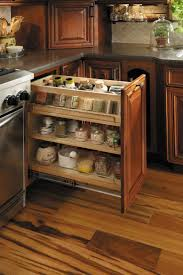 Kitchen Spice Rack Kitchen Kitchen Cabinet Spice Rack Also Remarkable Inside