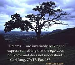Jung Dream Quotes Best of Dreams Quote From Carl Jung FrithLuton