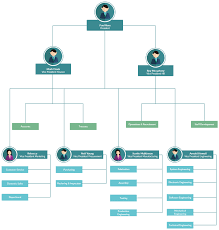 Bubble Organizational Chart Org Chart With Pictures To Easily Visualize Your