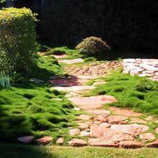 Small Picture 25 best Narrow Side Garden images on Pinterest Side garden