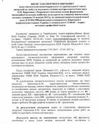Скандал с плагиатом жены Кириленко Опубликован документ с  Многие из наших собеседников считают что экспертное заключение Украинского языково информационного фонда НАНУ может быть поводом для опротестования