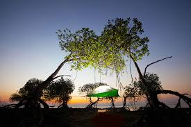Hanging Tree House Tentsiles Hanging Stingray Tent Is A Treehouse You Can Take
