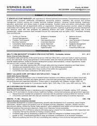 Executive Resume Template Word Microsoft Word Executive Resume Template Therpgmovie 7