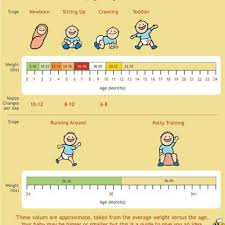 Baby First Year Weight Chart 79 Expert 8th Month Baby Weight Chart