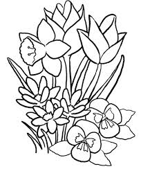 Disegno Di Fiori Primaverili Da Stampare Gratis Primavera Da Colorare