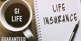Guaranteed Issue Life Insurance Quotes Adorable Guaranteed Issue Life Insurance Is An Affordable Way To Help Loved Ones