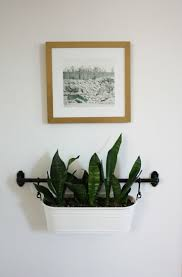 Wall Planters Ikea Best 25 Wall Mounted Planters Ideas On Pinterest Small Kitchen