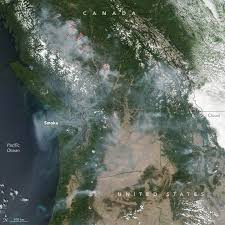 Here we study transport and deposition of bc, oc and brc over the greenland ice sheet from the fires that occurred in western greenland in august 2017. 2017 British Columbia Wildfires Wikipedia