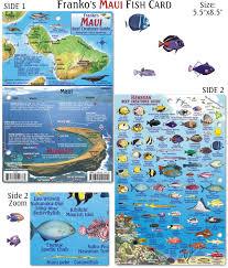 Pin By Deb Block On Maui Maui Fish Chart Maui Hawaii
