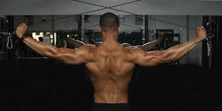 Best Back Workout Routines Askmen