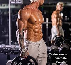 testosterone enant powder