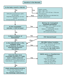 Clinical Practice Guidelines Jaundice Flowchart