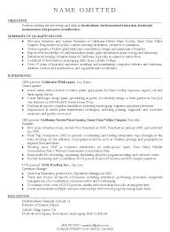 Resume Objective Statement Examples Simple Resume Objective Examples Environmental Science With Resume