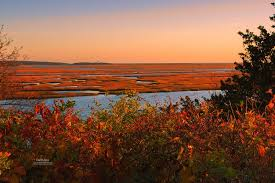 Landscape  The Official Dapixara Blog  Cape Cod PhotosWeather Cape Cod October