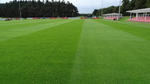 artificial football turf. For Football Fans, The Pitches Themselves Are Just As Much A Part Of Game Players And Managers. Teams Playing At Home Have An Advantage Which Artificial Turf L