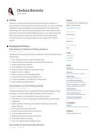 Sales Assistant Resume Writing Guide Resumevikingcom