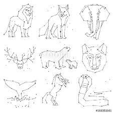 Collection Of Hand Draw Animals Constellation On Dark Sky