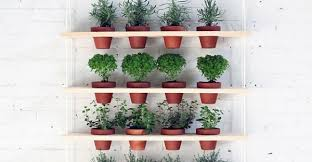 diy herb shelf 23 indoor small herb gardens that will inspire you