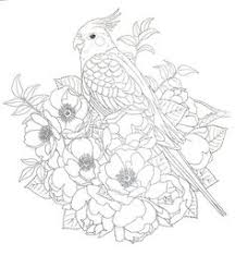 harmony of nature coloring book pg 30