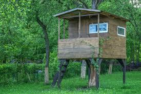 simple kids tree house. House On Tree In Summer Garden Simple Kids X