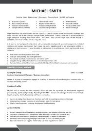 Free Resume Templates Professional Profile Template Example Of A For