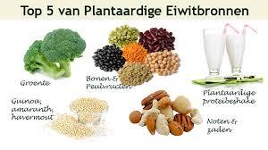 in welk voedsel zitten veel eiwitten