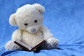 white teddy bear reading book free stock photo pictures of cute teddy bears