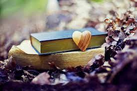 1920x1279 px, autumn, bokeh, book, fall ...