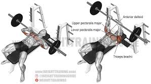 Incline Barbell Bench Press Vs Dumbbell Decline Barbell Bench Incline Bench Press Grip
