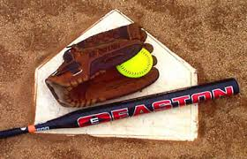 Image result for Softball bats