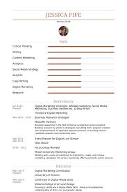 Media Researcher Sample Resume Digital Marketing Strategist Resume samples VisualCV resume 2