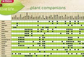 Vegetable Growing Chart 47 Matter Of Fact Garden Chart Planting