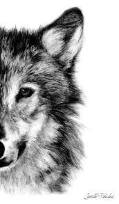 Les 25 Meilleures Id Es De La Cat Gorie Loup Dessin Sur Pinterest