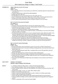 Sales Resume Key Account Sales Resume Samples Velvet Jobs 15