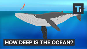 This incredible animation shows how deep the ocean really is ...