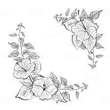 白黒ハイビスカスの花フレーム イラストレーションのベクターアート