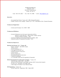 Examples Of Professional Resumes Best of Examples Of Professional Resumes Objectives Resume Summary