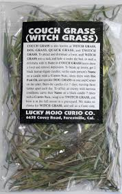 Grass Couch Herb Magic Catalogue A Couch Grass