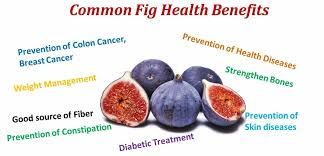the great health benefits of mon figs
