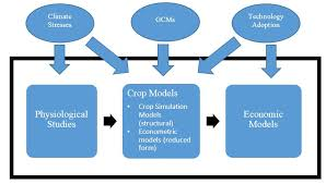 Structural Approaches And Technology Adoption A New Paper